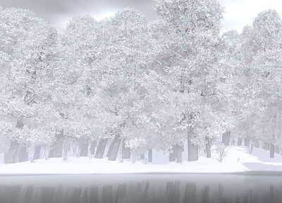 nature, winter, snow, trees, monochrome - random desktop wallpaper