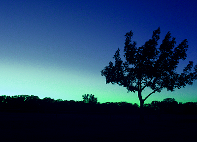 nature, dusk - random desktop wallpaper