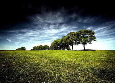 green, blue, clouds, landscapes, nature, black, trees, grass, skyscapes - desktop wallpaper