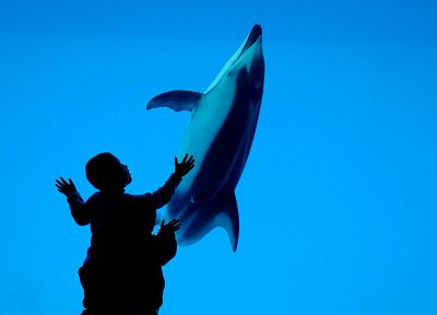 blue, dolphins, children - desktop wallpaper