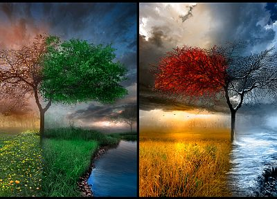 landscapes, winter, trees, autumn, artistic, seasons, summer, spring, rainbows - desktop wallpaper