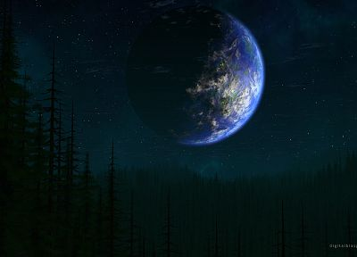 outer space, forests, Earth - desktop wallpaper
