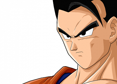 Son Gohan, Dragon Ball Z - random desktop wallpaper