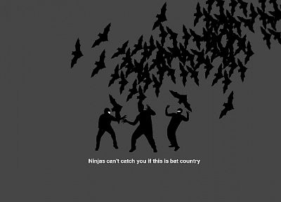 ninjas, ninjas cant catch you if, Country, bats - related desktop wallpaper