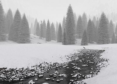 landscapes, winter, snow, trees, forests - related desktop wallpaper