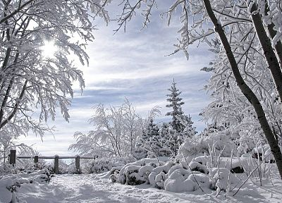 landscapes, nature, winter, snow, trees, skylines, fences - related desktop wallpaper