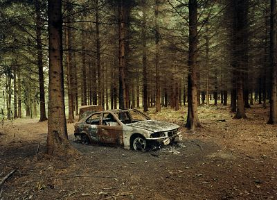 nature, BMW, trees, cars, fields, rust, rusted - desktop wallpaper