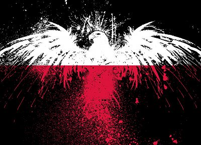 red, white, eagles, flags, Polish, Poland, black background, White Eagle - desktop wallpaper
