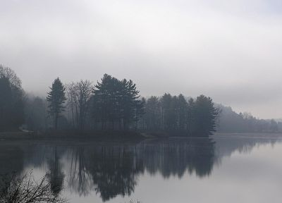 water, trees, fog, mist, lakes, rivers, reflections - desktop wallpaper