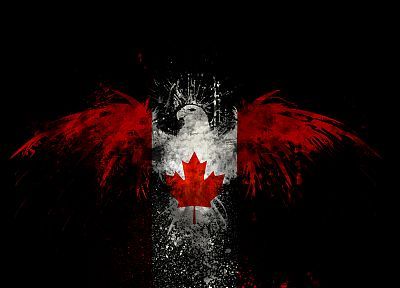 birds, Canada, Canadian flag - related desktop wallpaper