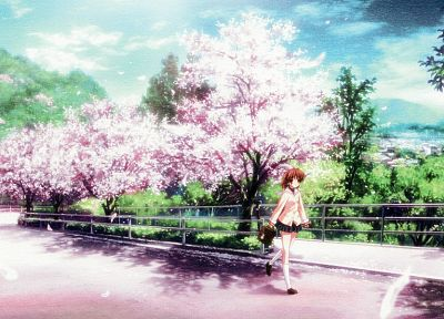 cherry blossoms, Clannad, Furukawa Nagisa - random desktop wallpaper