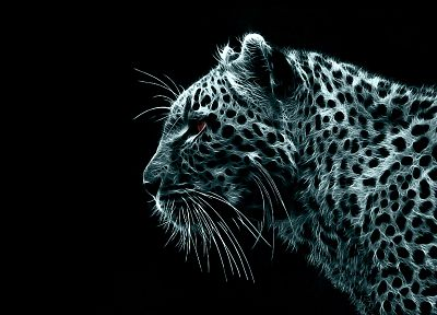 digital, Fractalius, leopards, black background - desktop wallpaper