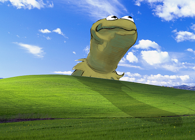Windows XP, Kermit the Frog, Microsoft Windows, The Muppet Show - related desktop wallpaper