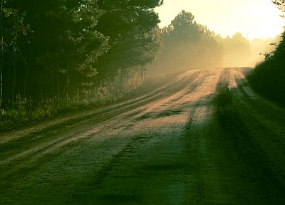 sunrise, trees, sunlight, roads - related desktop wallpaper