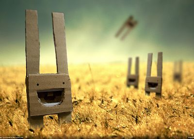 green, Sun, happy, grass, cardboard, rabbits - random desktop wallpaper