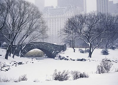 winter, snow, bridges, parks - desktop wallpaper