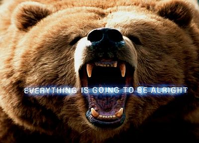 animals, funny, bears, roar, Everything Is Going To Be Alright - random desktop wallpaper