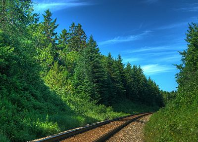 nature, forests, railroad tracks, railroads - random desktop wallpaper