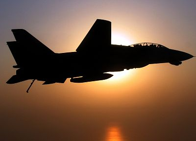 aircraft, military, silhouettes, navy, F-14 Tomcat - random desktop wallpaper