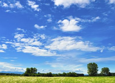clouds, trees, grass, skyscapes - related desktop wallpaper