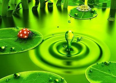 green, 3D view, DeviantART, digital art, water drops, ladybirds - desktop wallpaper
