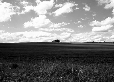 landscapes, nature, monochrome - random desktop wallpaper