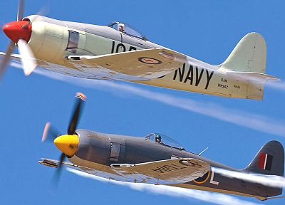 aircraft, military, planes, Hawker Sea Fury - random desktop wallpaper