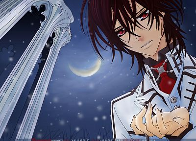 Moon, Vampire Knight, anime, Kuran Kaname - random desktop wallpaper