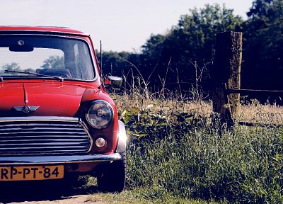 cars, mini cooper, depth of field, red cars - random desktop wallpaper