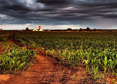 landscapes, overcast, HDR photography, farmland - random desktop wallpaper