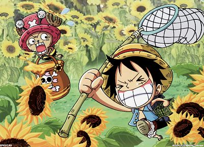 One Piece (anime), chopper, Monkey D Luffy - random desktop wallpaper