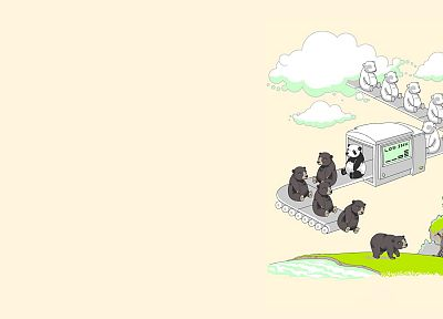 funny, panda bears, bears - desktop wallpaper