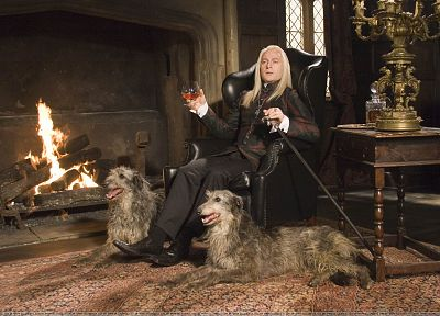 dogs, Harry Potter, Jason Isaacs, Lucius Malfoy, Death Eaters, fireplaces - random desktop wallpaper