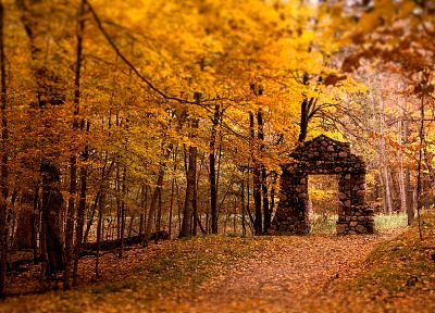 landscapes, nature, autumn, forests, gate - related desktop wallpaper