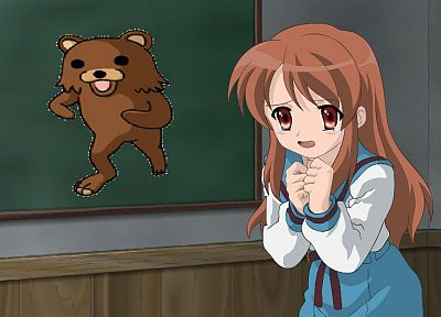 Pedobear, Asahina Mikuru, meme, The Melancholy of Haruhi Suzumiya - related desktop wallpaper