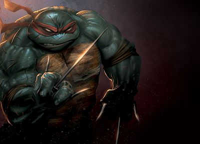 cartoons, ninjas, Teenage Mutant Ninja Turtles, raphael - related desktop wallpaper