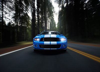 trees, cars, roads, vehicles, Ford Mustang - desktop wallpaper