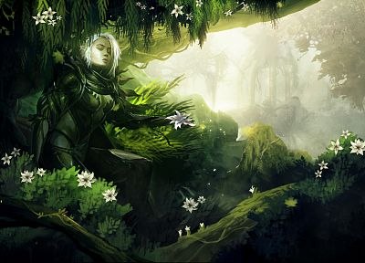 video games, nature, Guild Wars, fantasy art, artwork - random desktop wallpaper