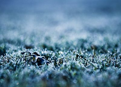 nature, frozen - random desktop wallpaper